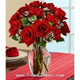 A Vase of 12 Red Roses